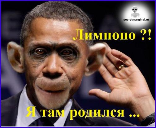Демотиваторы секретные маргиналы Лимпопо