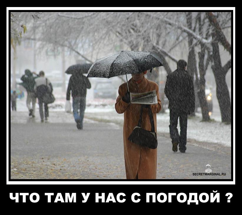 совместные приколы про дождь в картинках зимой ребят