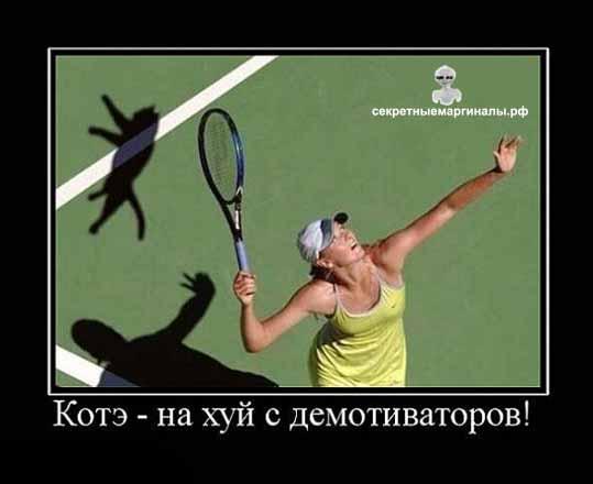 демотиватор кот и тенис