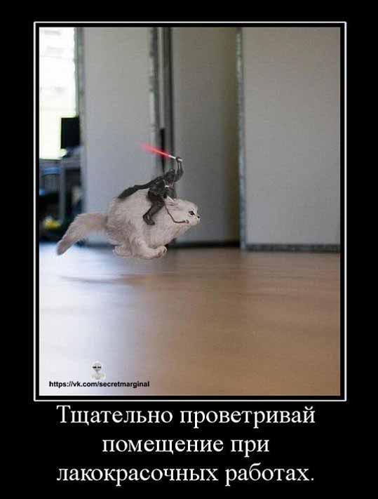 наркоманский кот демотиватор