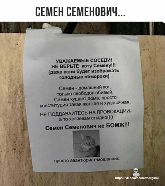 Семён Семеныч