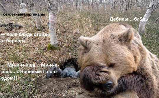 Медведь и дебилы