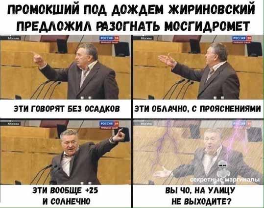 прогноз погоды Жириновский демотиватор