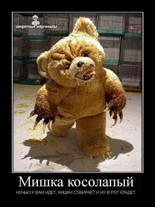 демотиватор медведи привед медвед косолапый