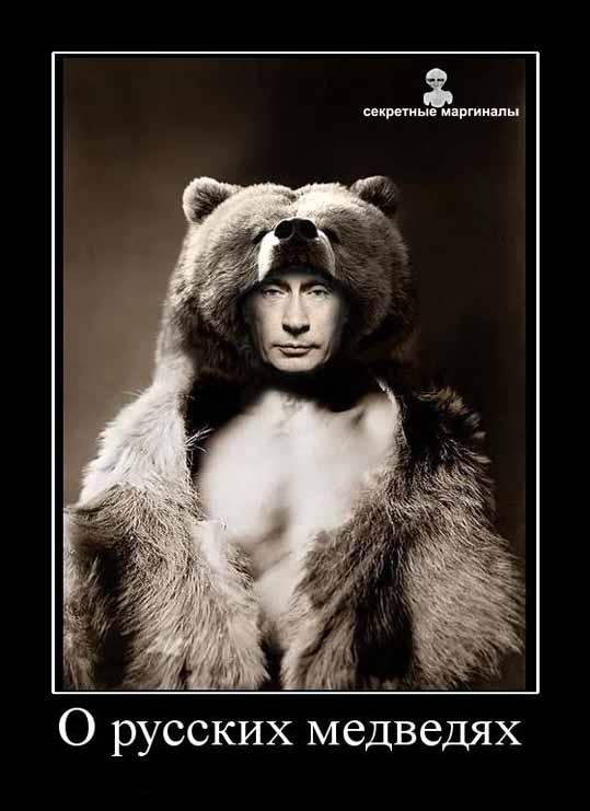 русские медведи демотиватор путин
