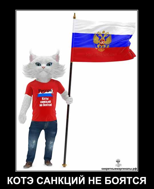 22 августа День Государственного флага Российской Федерации демотиватор