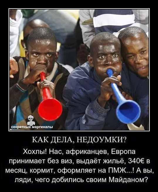 Демотиваторы Украина