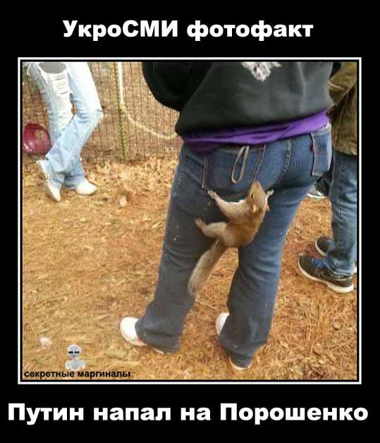 Демотиваторы с Путиным