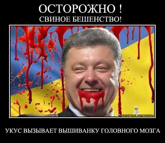 Демотиватор с Порошенко