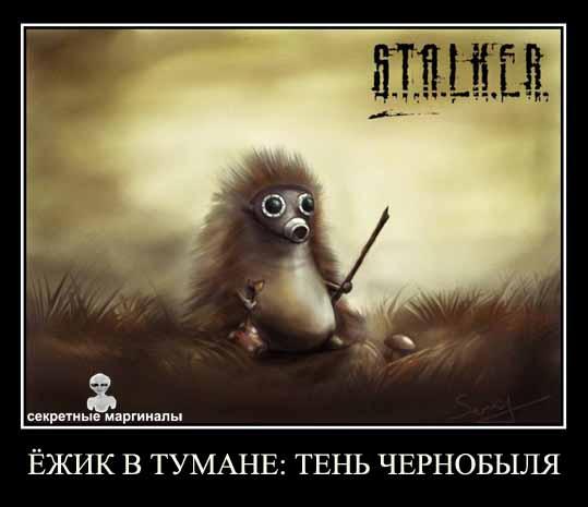 Ёжик в тумане: Тень Чернобыля STALKER