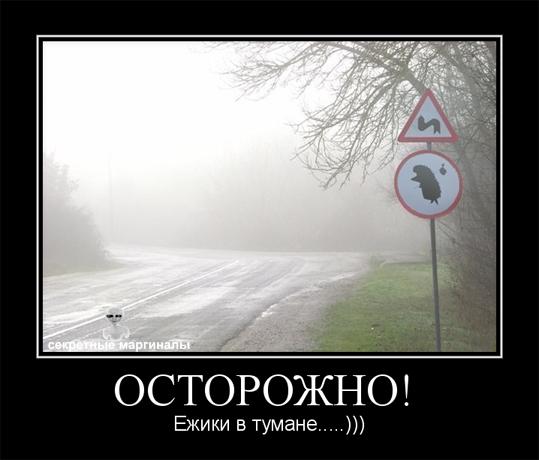 Ёжик в тумане демотиватор