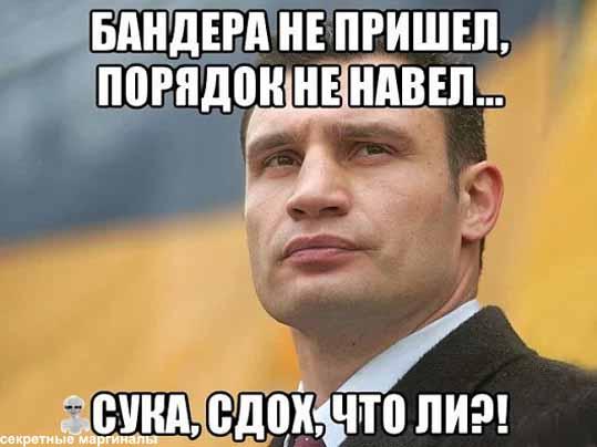 Демотиватор Кличко и Бандера