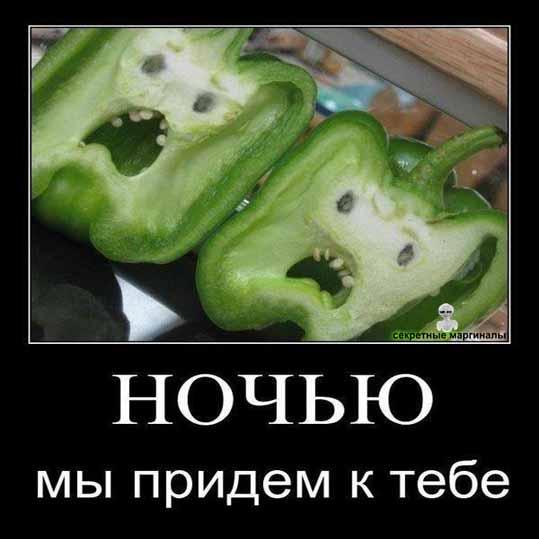 Овощи демотиваторы приколы