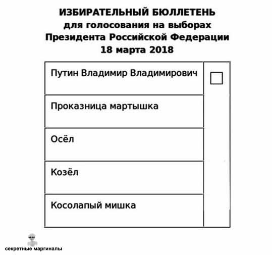 Все на выборы !
