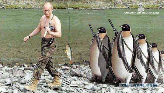 Путин и пингвины