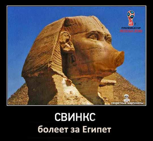 Россия -Египет