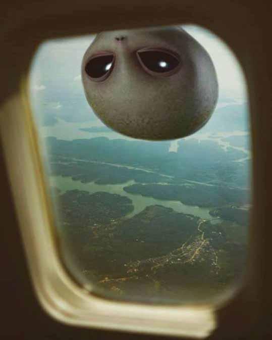 Пришелец в окне