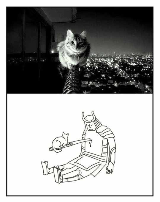 Кот убийа
