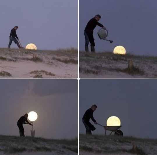 посадил Луну