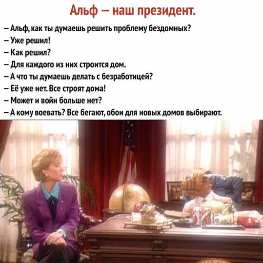 Альф - наш президент