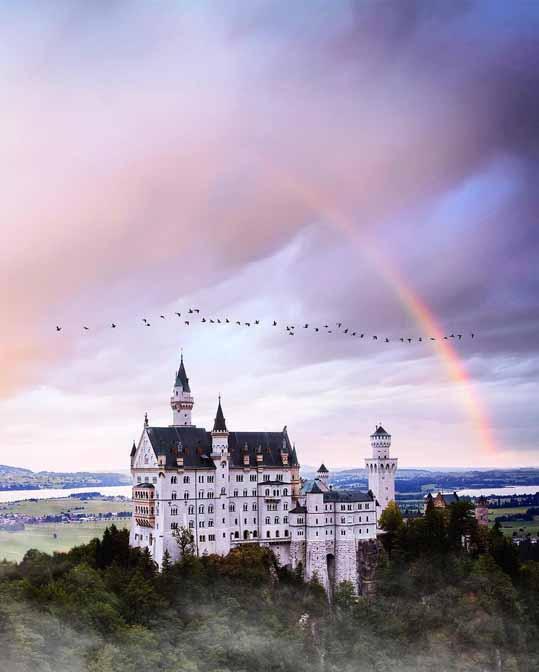 Замок и птицы