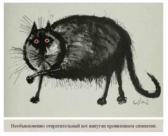 Кот напуган