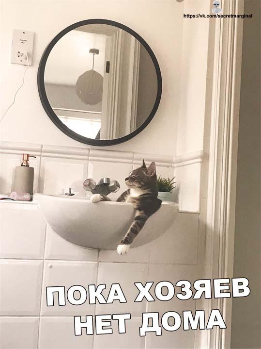 Нет дома