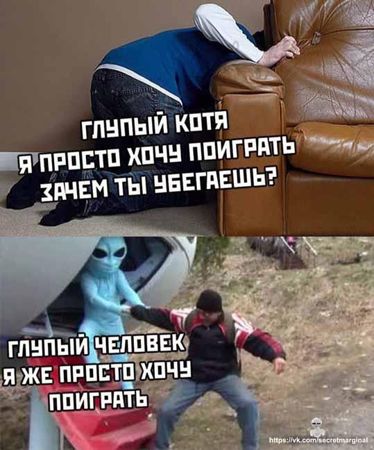 Глупый Котя