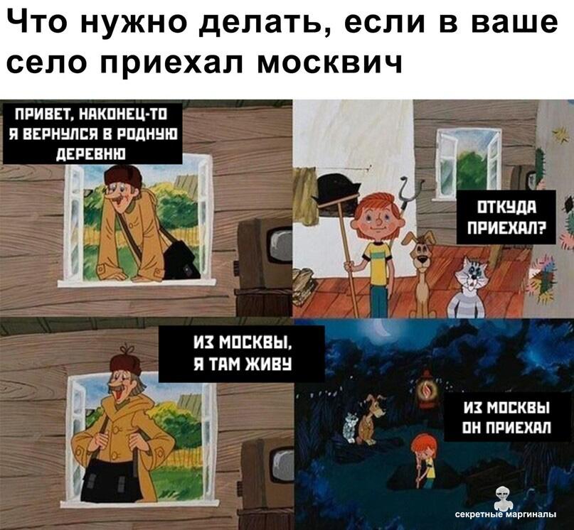 приехал москвич
