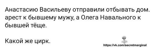 Цирк Навального